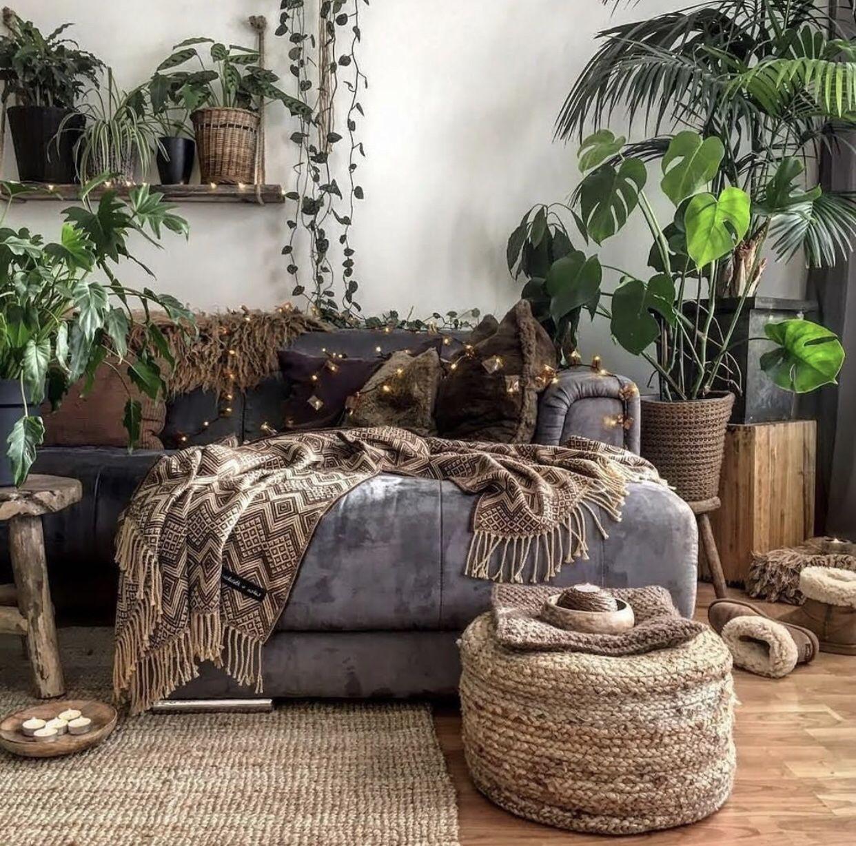 Boho Plants